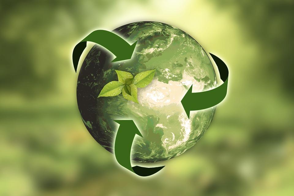Sauvegarde de la planète